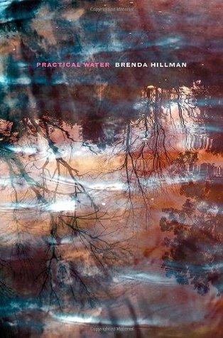 Practical Water by Brenda Hillman