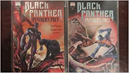 Black Panther - Panther's Prey #1 of 4 by Steve Mattsson, Don McGregor