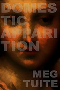 Domestic Apparition by Meg Tuite