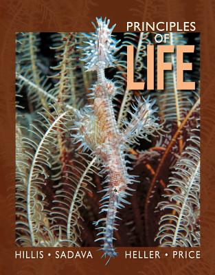 Principles of Life High School Edition by David M. Hillis, David E. Sadava, H. Craig Heller