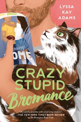 Crazy Stupid Bromance by Lyssa Kay Adams