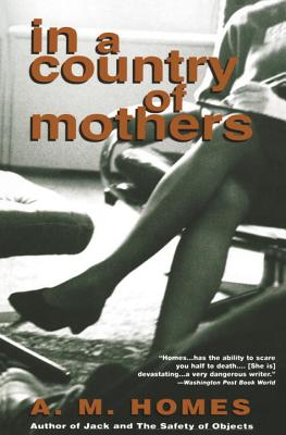 In a Country of Mothers by A. M. Homes