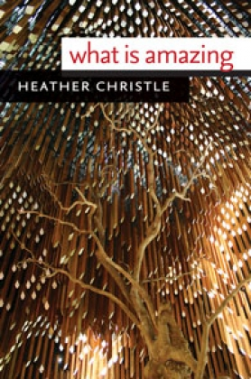 What Is Amazing by Heather Christle