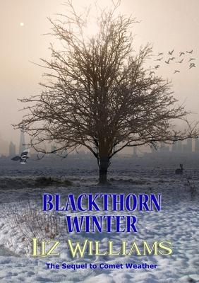 Blackthorn Winter by Liz Williams