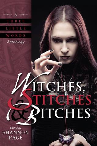 Witches, Stitches, and Bitches by Rebecca Fung, Christine Morgan, Camille Griep, Garth Upshaw, Tom Howard, Kodiak Julian, Bob Brown, Kate Brandt, Shannon Page, Alaina Ewing, Eva Langston, Stephanie Bissette-Roark, Bo Balder, Katie Cord, J.H. Fleming, Julie McGalliard, Gabrielle Harbowy, Caren Gussoff
