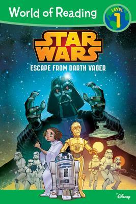 Star Wars Escape from Darth Vader by Michael Siglain