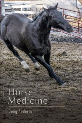 Horse Medicine by Doug Anderson