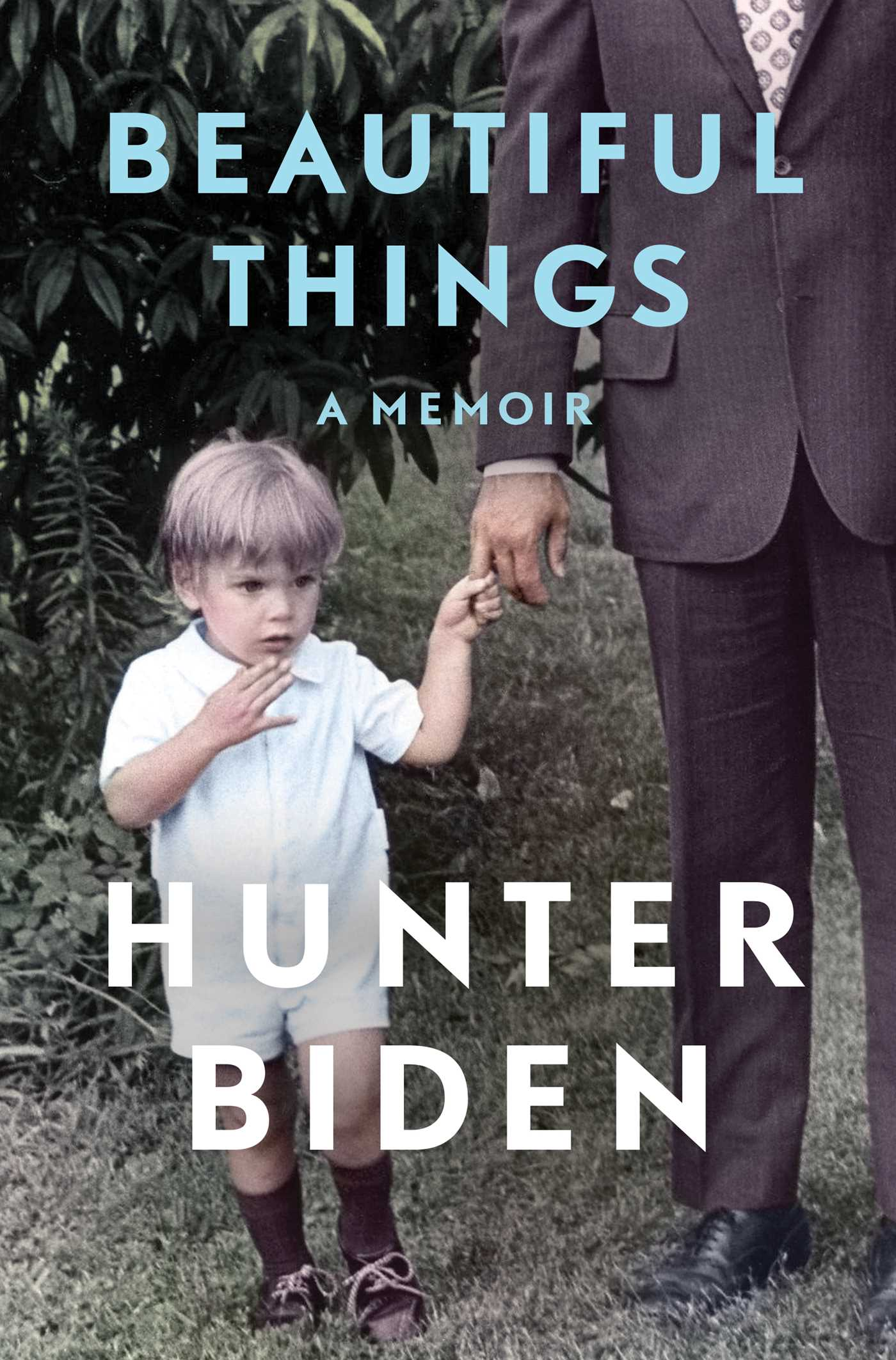 Beautiful Things by Hunter Biden
