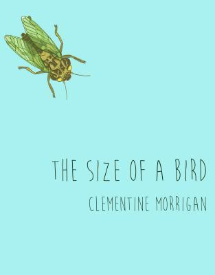 The Size of a Bird by Clementine Morrigan