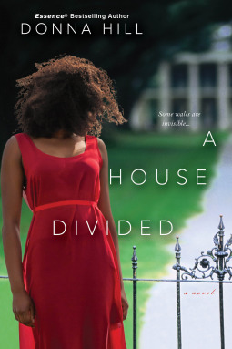 A House Divided by Donna Hill