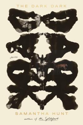 The Dark Dark: Stories by Samantha Hunt