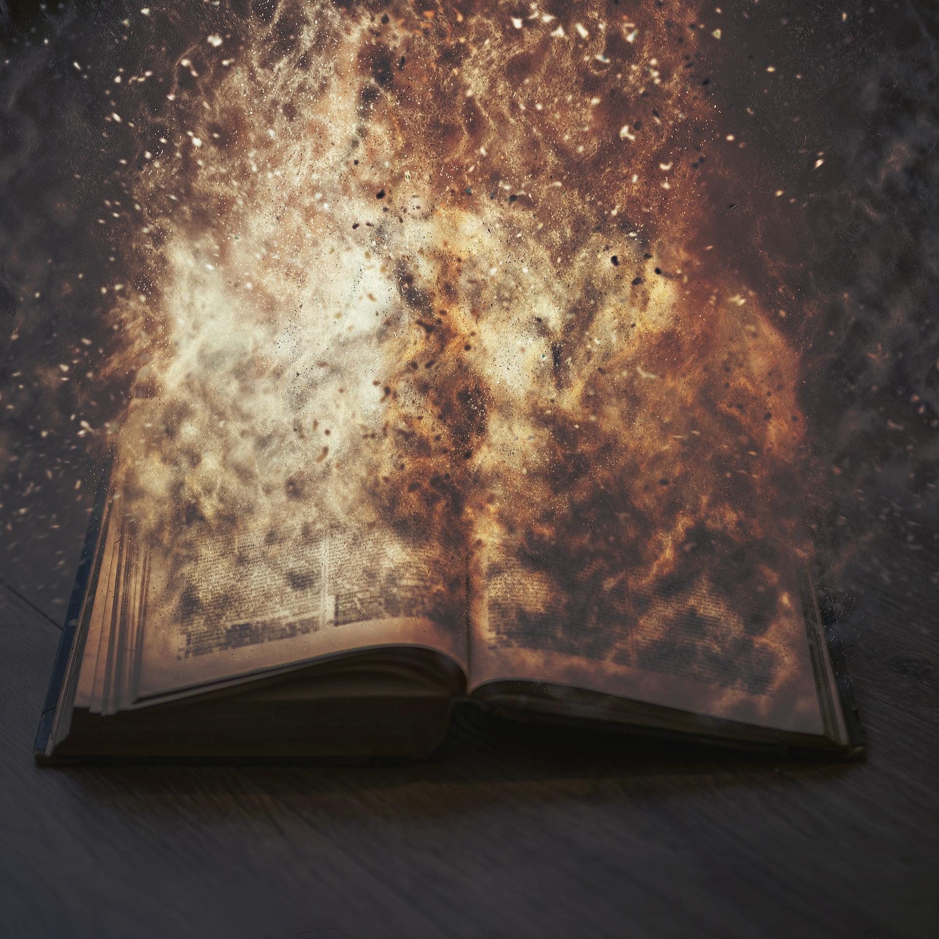 booksthatburn's profile picture